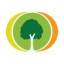 Бесплатный аналог Древо Жизни - Family Tree Builder