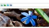 """Скриншот №2 """"ITPSocial Buttons"""""""