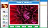 "Скриншот №1 ""SSuite Office - Gif Animator"""