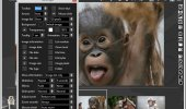 "Внешний вид ""Xlideit Image Viewer"""
