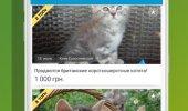 """Скриншот №2 """"OLX.ua"""""""