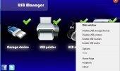 """Внешний вид """"USB Manager"""""""