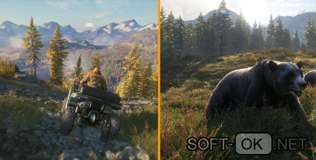 Игра the Hunter: Call of the Wild Читы